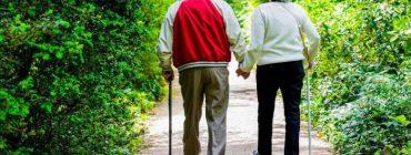 Focus Sulla Malattia Di Parkinson. Un Corso ECM A Distanza Dedicato Agli Specialisti Neurologi