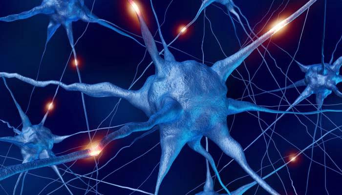 Ridurre I Sintomi Nelle Malattie Dei Motoneuroni