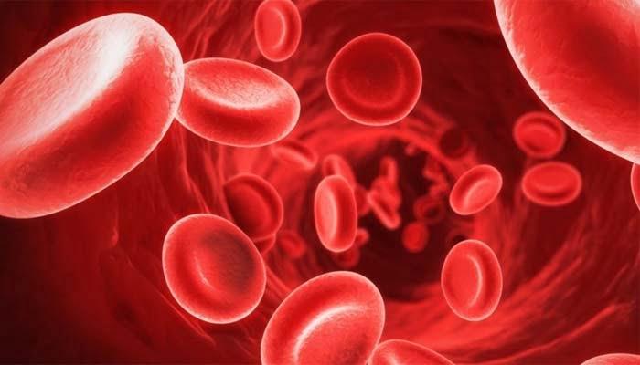 La Trombocitopenia Immune Nella Sclerosi Multipla